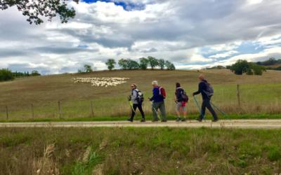 associazione camminare guarisce durante il  cammino