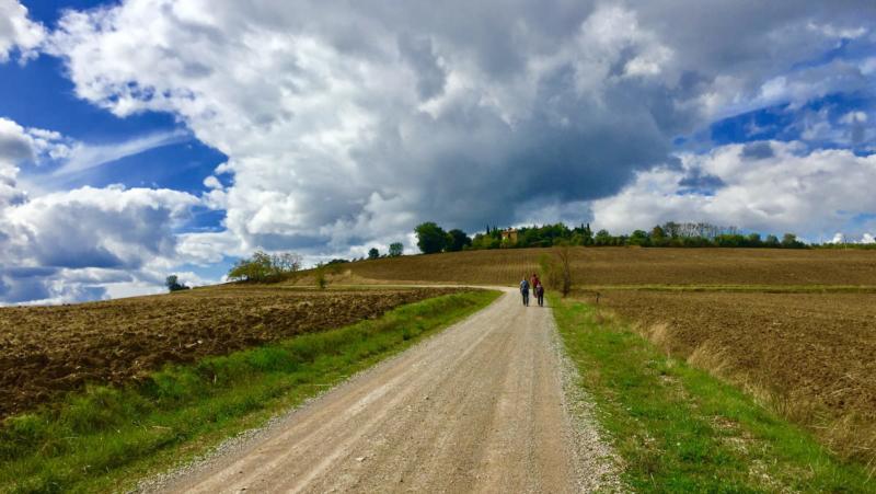 La Via del Trasimeno terza tappa da Panicale a Città della Pieve